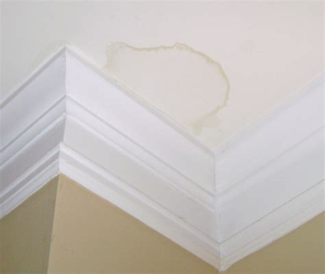 how to cover water stains on ceiling how to repair ceiling water stains homespree