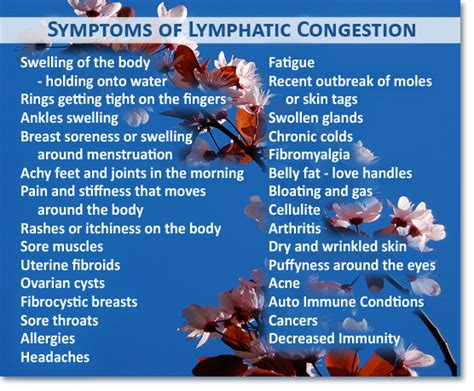 Brushing Detox Symptoms by Unclog The Pipes Lymphatic System 171 Steps Big