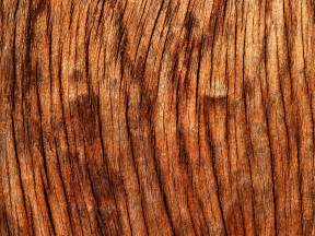 30 amazing free wood texture backgrounds tech lovers l web design