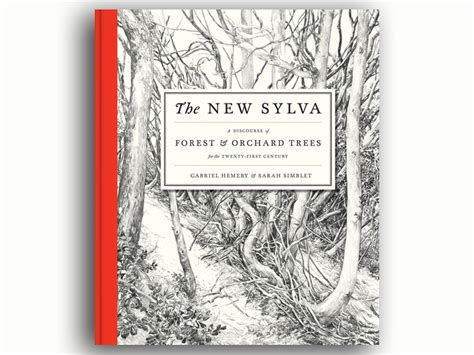 the new sylva a sylva foundation news