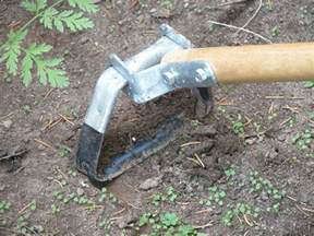 tools for controlling weeds in the garden