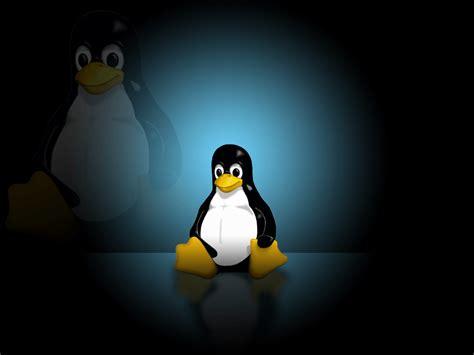computer wallpaper linux linux desktop wallpapers wallpaper cave