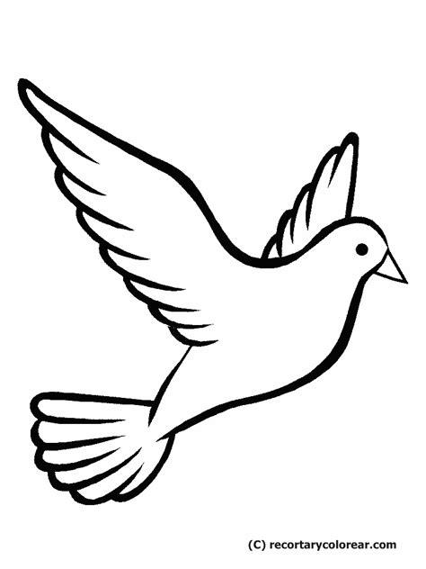 imagenes de palomas blancas grandes dibujos de palomas dibujos