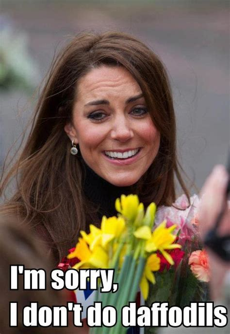 Kate Meme - a second helping of the daily kate morceau de gateau