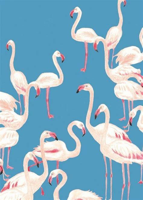 flamingo print wallpaper flamingo pattern s u g a r pinterest