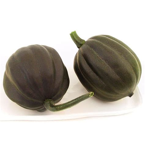 Table Squash by Buy Certified Organic Vegetable Seeds Grow Non Gmo Seeds