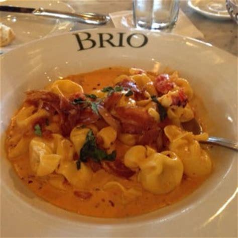 brio st louis happy brio tuscan grille 147 photos 187 reviews italian