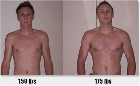 creatine 2 week results how to gain weight and build mass fast