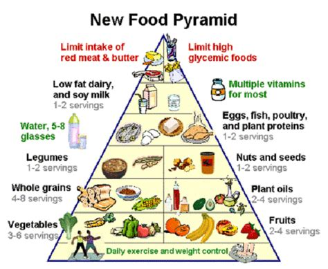 healthy fats usda usda new food pyramid 2015 images human