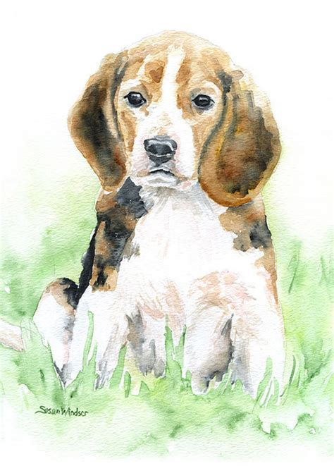 dudye 187 animal watercolor paintings by susan