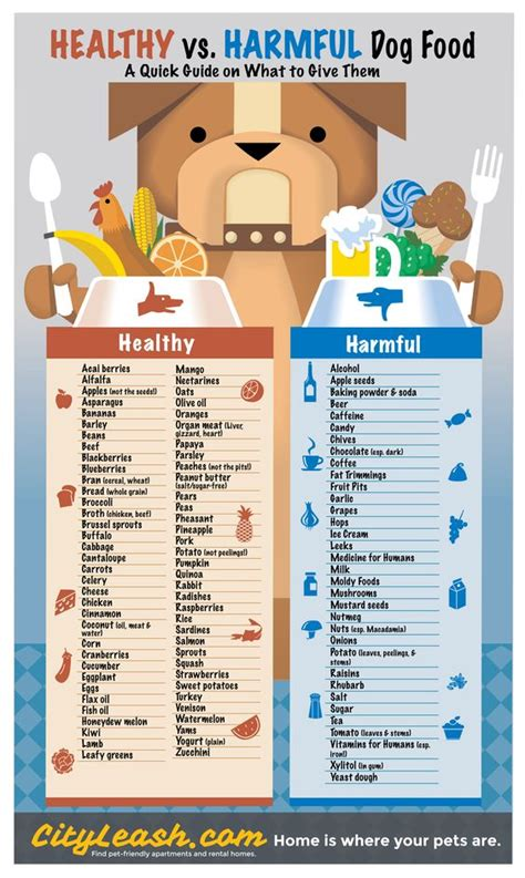 Table Food For Dogs by The Do S And Dont S Of Food With Your