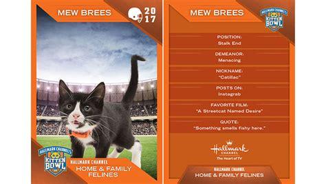 kitten bowl trading cards home family felines 6