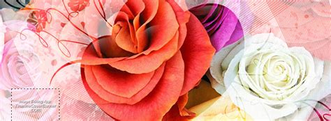 facebook themes love picture 187 love theme with roses as background