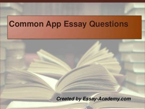 common app essay sle common app essay questions