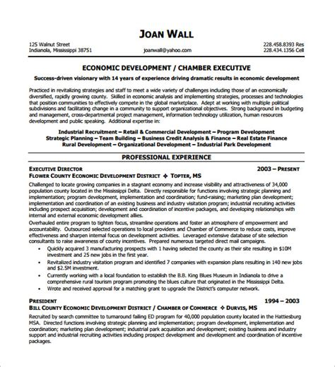 Executive Resume Templates Word by Executive Resume Template 12 Free Word Excel Pdf