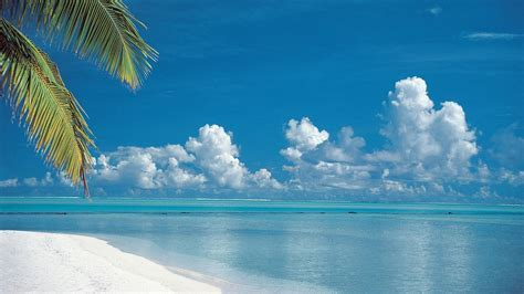 Cuisson îles plages tropicales Papier peint   AllWallpaper