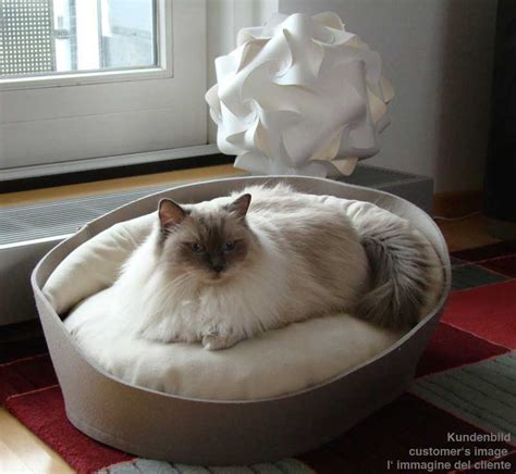 kitten beds designer cat beds comfortable pet products made from felt