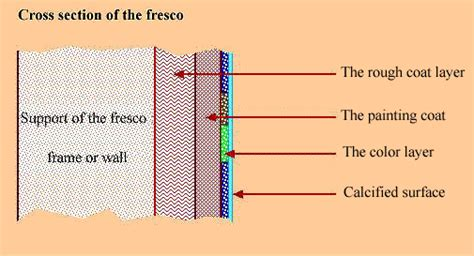 definition of cross section fresco definition