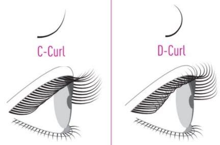 pre fanned volume lashes buy 2d pre fanned volume eyelash extension also called y