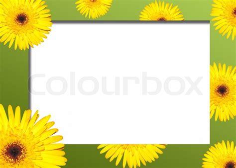 border design flower yellow yellow flower on a green border stock photo colourbox