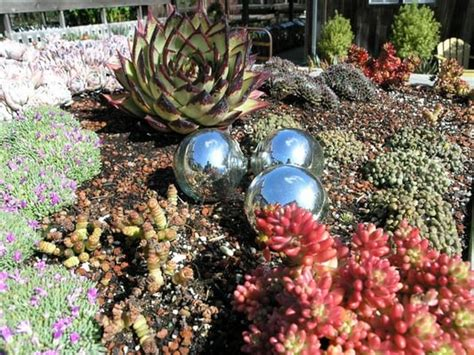 cottage gardens of petaluma cottage gardens of petaluma petaluma ca verenigde