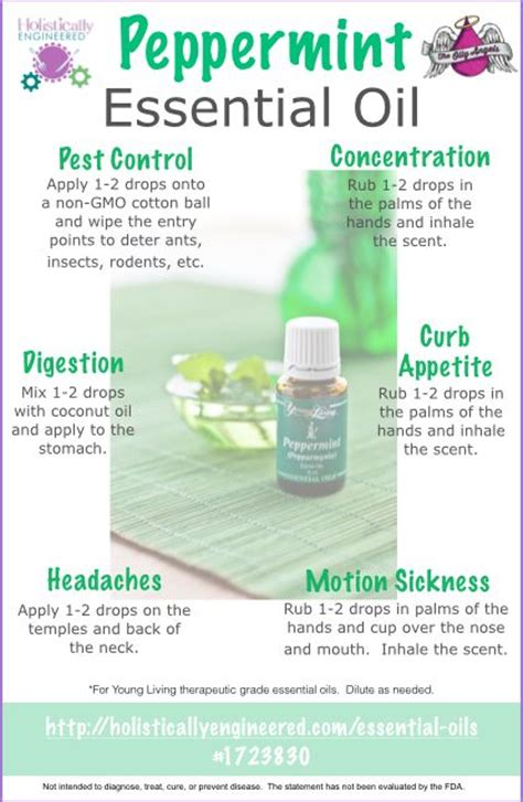 Ways To Use Essential Oils by 10 Ways To Use Peppermint Essential I Use It