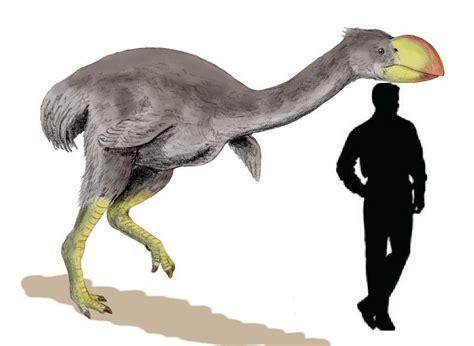imagenes animales prehistoricos animales prehist 243 ricos parte 1 el pleistoceno ciencia y