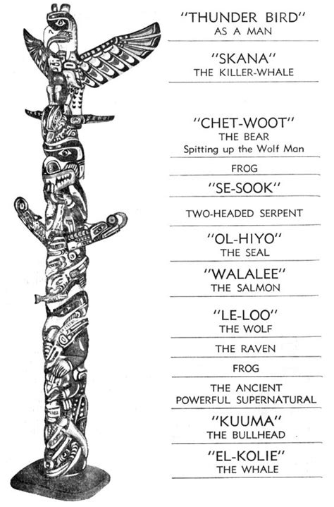native american symbols what do they mean native american totole animal symbols and meanings