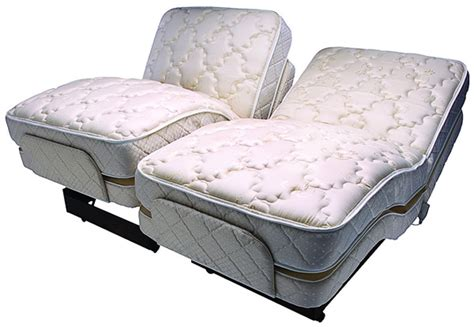 dual adjustable beds flex a bed dual king premier dk780 adjustable bed