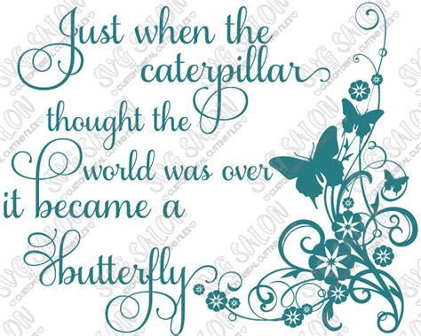 Just When You Thought New On The Block Were by Just When The Caterpillar Thought The World Was It