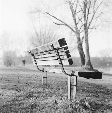 la panchina la panchina museo