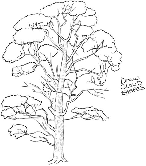 how to draw a doodle tree how to draw trees drawing realistic trees in simple