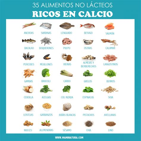 alimentos con m s calcio alimentos altos en vitamina c importance of vitamin d
