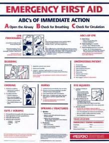 first aid poster 1staidsupplies com