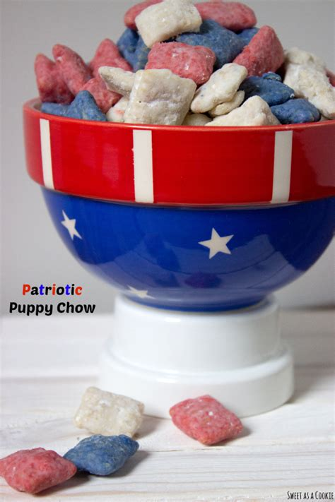 patriotic puppy 4th of july space