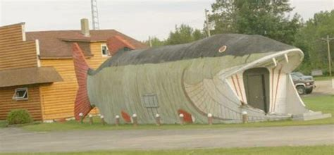 strange house designs 21 ususual and strange house designs curious funny photos pictures