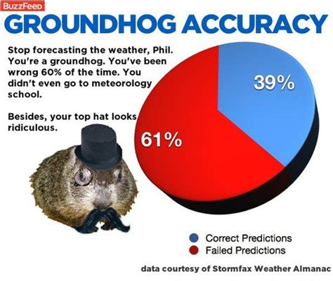 groundhog day prediction punxsutawney phil predicts news article