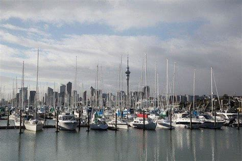 daily deal l a new zealand airfare plus car starts at 1 210 latimes