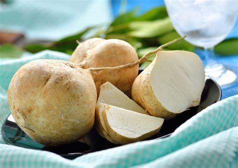 cucinare la rapa la rapa ricette e propriet 224 mangiarebuono it