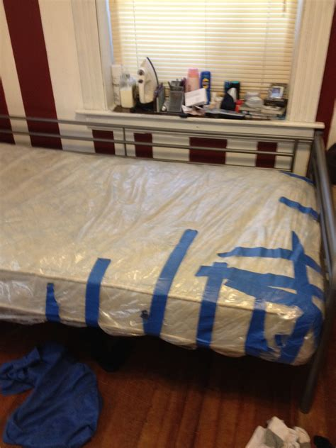 bed bug covers for mattresses bed bug mattress covers a right way and a wrong way envirocare pest control