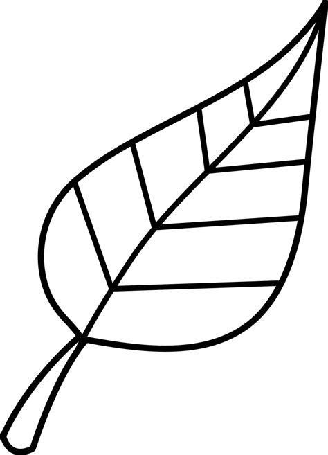 fall clipart black and white best fall leaves clip black and white 21715