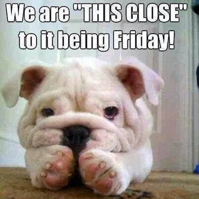Yay Meme Face - it s pre friday tgif weekend funnies pinterest