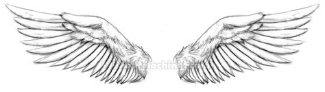 Wings Tattoo By Kiken Girl On Deviantart Wing Tattoos Designs