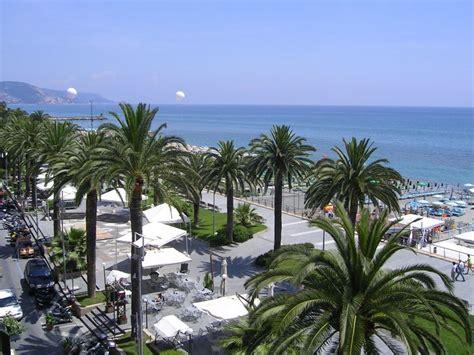 tipi di palma da giardino palma cycas revoluta alberi caratteristiche della palma