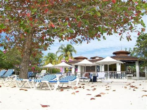 guestbook cocolapalm resort coco la palm s entertainment staff kerieann always