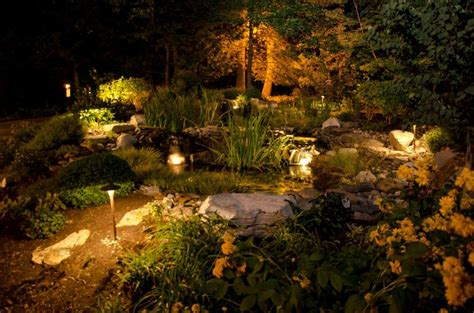light up the night with beautiful pond lighting
