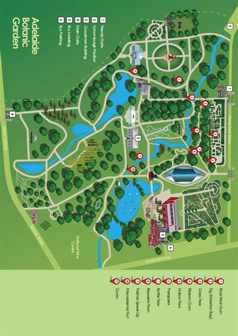 Botanic Gardens Adelaide Map Aboriginal Plant Use Jp