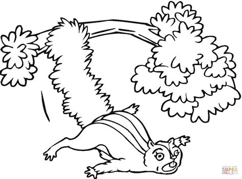 flying squirrel from the tree coloring page free