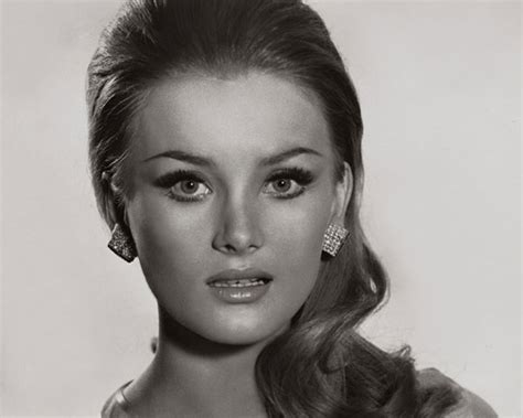 hairstyles of the 60s hair styles 1960s hairstyles