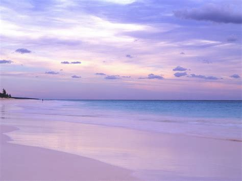 beaches with pink sand bahamas pink sand beaches wallpaper
